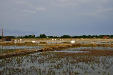 Salzgärten von Nin