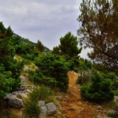 Weg zu den Totenraststeinen
