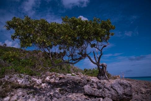 Parque Nacional Bahía de Naranjo