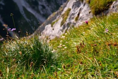 Aussicht Max-Klotz Steig
