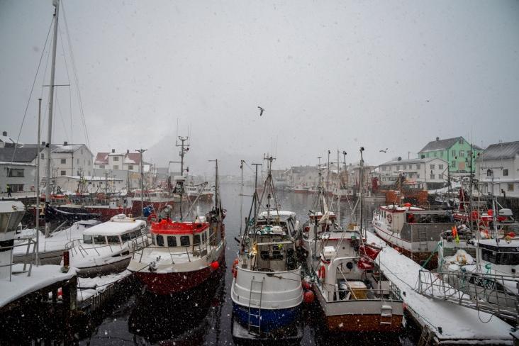 Fischerboote im Hafen von Henningsvær