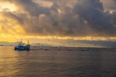 Einfahrendes Fischerboot