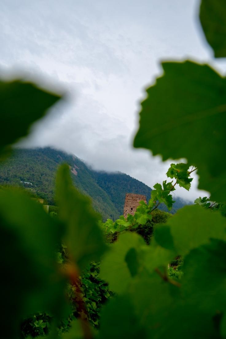 Blick auf die Ruinen der Burg von Segonzano